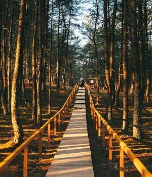 Главные достопримечательности национального парка с описанием и картой